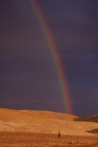 לבד במדבר